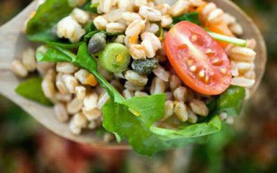 Mit jelent a teljes értékű növényi táplálkozás?